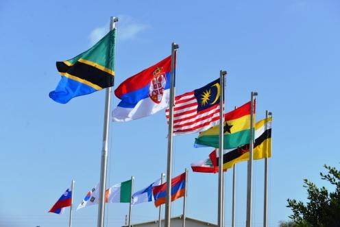 11 bandiere