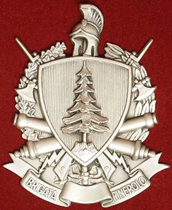 stemma-della-brigata-pinerolo250